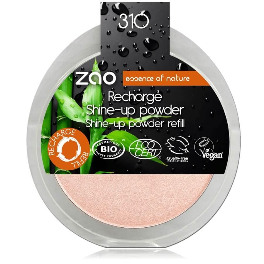 Recarga shine-up powder