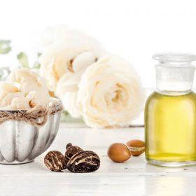 ingredientes 100% naturales zao makeup