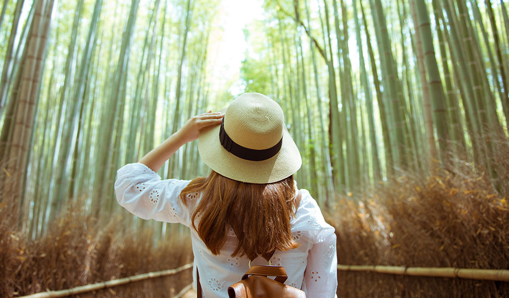 el bambú en zao makeup